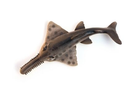 top view toy saw shark model on white background