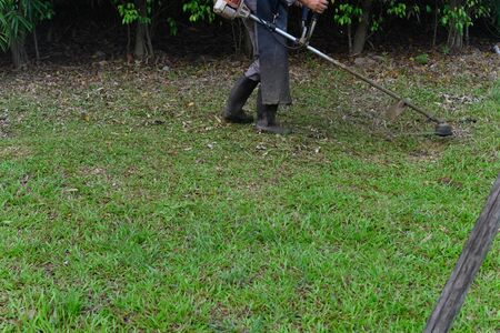 worker operating a handheld lawn mower and cutting grass Banque d'images