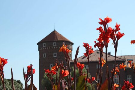 The Wawel Castle situated in Krakow,Poland with red flowers in foreground. Shot on a sunny summers day.