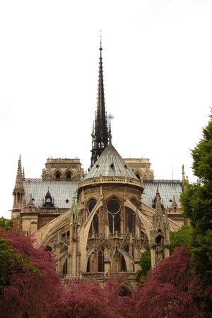 Notredame cathedral in Paris, France with beautiful foliage. Stock Photo