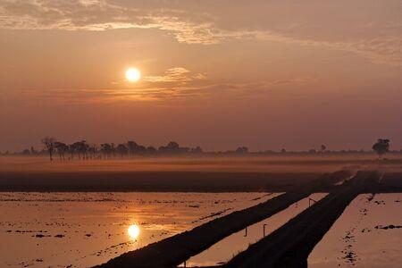 Beautiful sunrise over a pond.