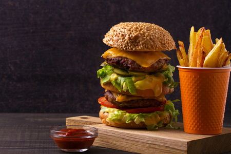 Scrumptious beef burger with fries 스톡 콘텐츠