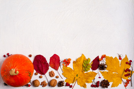 Autumn leaves, pumpkin, berries and nuts on white background with copy space. Mockup for seasonal holiday postcard. View from above, top Stock Photo