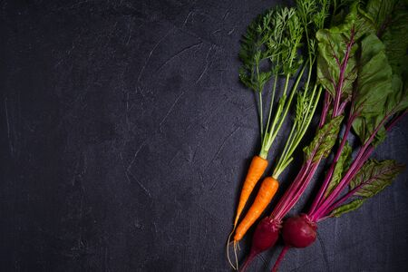 Carrots and beetroots  on dark background. Summer vegetable background. Layout, flat lay, copy space