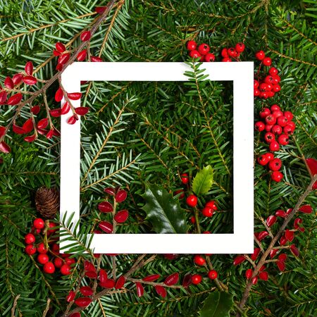 Layout made of Christmas tree branches, red berries and white paper card note frame. Mockup, flat lay. New Year winter season concept
