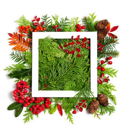 Layout made of Christmas tree branches and paper card note frame on white background. Mockup, flat lay. New Year winter season concept