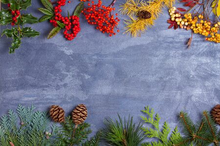 Layout made of Christmas tree branches, red berries and pine cones. Mockup, flat lay. Christmas and New Year winter season concept, copy space Stok Fotoğraf