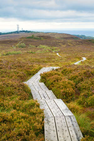 Slieve Bloom Mountains in County Laois, Ireland
