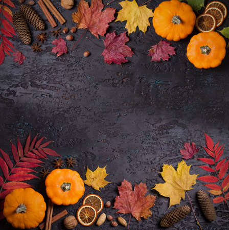 Colorful autumn or Thanksgiving background. Mockup for seasonal concept. Copy space
