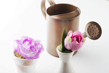 Watering can next to flowers on white background. Isolated. Horizontal shoot.