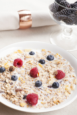 Cereal bowl breakfast with milk, raspberries and blueberries next to a glass with blackberries. Vertical studio shot. Stock Photo