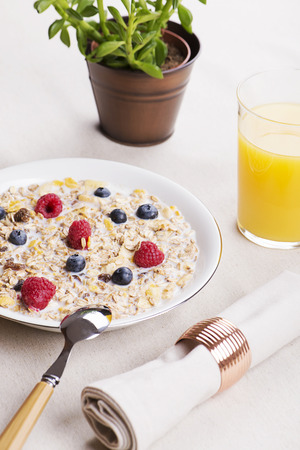 Cereal bowl breakfast with milk, raspberries and blueberries next to orange juice and decoration plant. Vertical studio shot. Stock Photo
