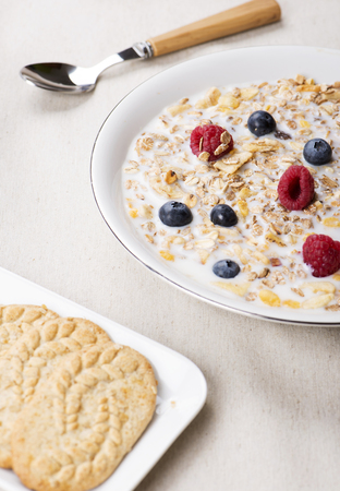 Cereals with milk, raspberries and blueberries next to bowl with cookies. Vertical studio shot.