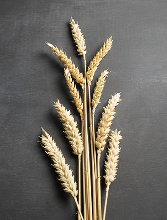 Wheat flower on black background. Vertical studio shot. Stock Photo