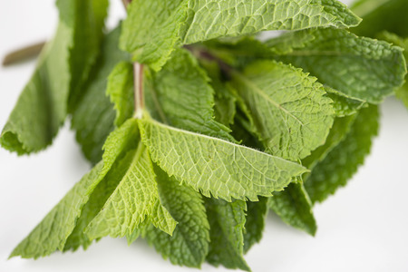 Peppermint on white background. Isolated. Food