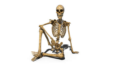 Funny skeleton sitting on ground and smiling, human skeleton isolated on white background, 3D rendering 版權商用圖片