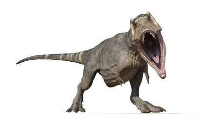 T-Rex Dinosaur, Tyrannosaurus Rex reptile, prehistoric Jurassic animal roaring on white background, front view, 3D illustration Stock Photo