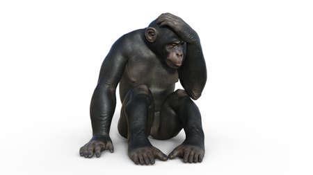 Chimpanzee monkey, primate ape thinking, wild animal isolated on white background, 3D illustration