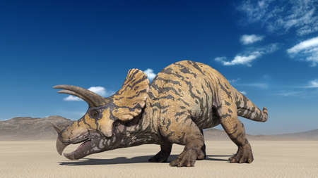 Triceratops, dinosaur reptile crawling, prehistoric Jurassic animal in deserted nature environment, 3D illustration