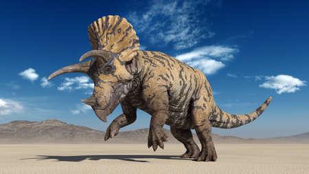 Triceratops, dinosaur reptile prancing, prehistoric Jurassic animal in deserted nature environment, 3D illustration Stock Photo