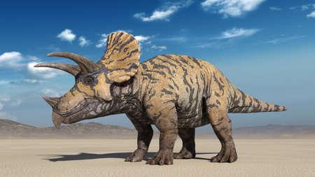 Triceratops, dinosaur reptile standing, prehistoric Jurassic animal in deserted nature environment, 3D illustration