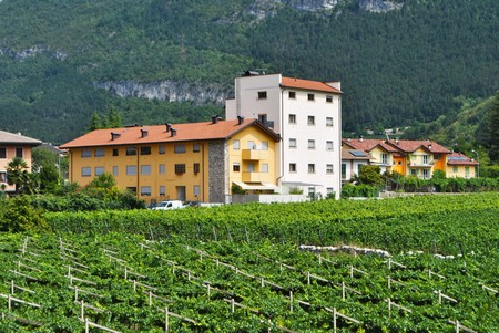 small town with a bell tower and residential buildings with blue sky and countryside of vineyards photo