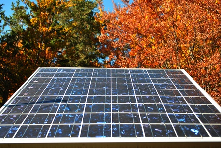 solar panel in the woods of larch Stock Photo - 8411193