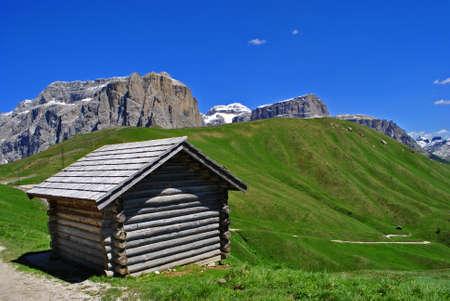 fassa: Summer portrait of Italian Dolomites in val di Fassa South Tyrol Alps Italy
