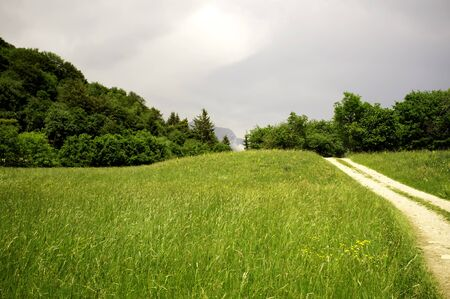 beautiful dirt road and meadow in Trentino Alto Adige Stock Photo - 9810436