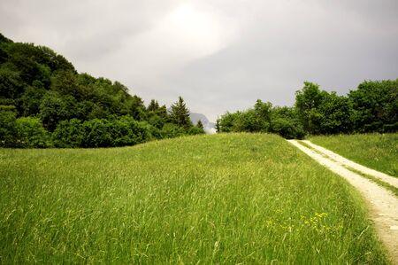 beautiful dirt road and meadow in Trentino Alto Adige Stock Photo - 9810436