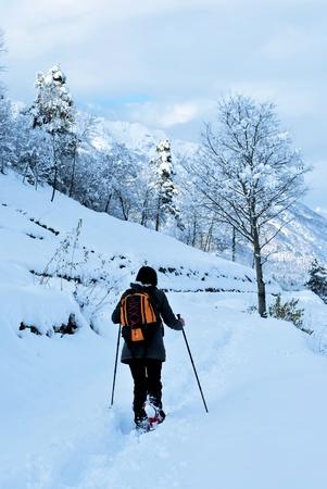 Hiker walks in snow forest photo