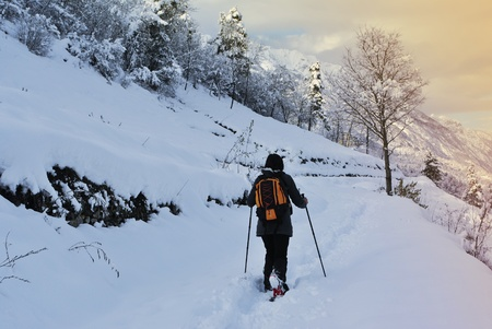 Hiker walks in snow forest Stock Photo - 10312010