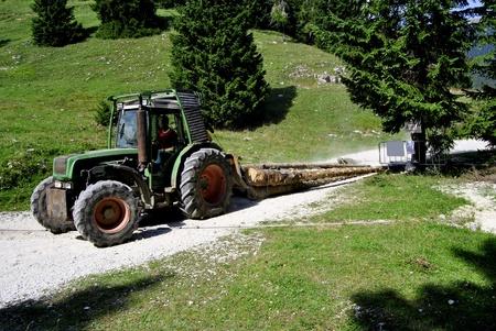 logging railroads: trattore a pieno carico taglia tronchi sulla strada