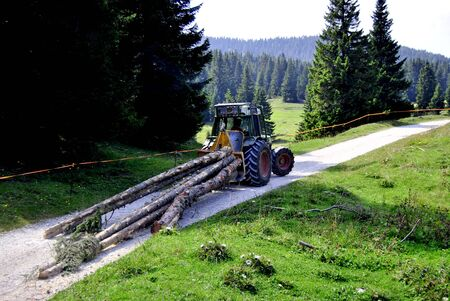 logging railroads: laden tractor cut logs on the road