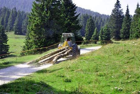 logging railroads: carichi di tronchi tagliati trattore sulla strada Archivio Fotografico