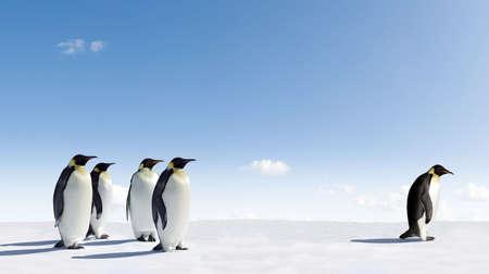 pinguins: Manchot Empereur rejet�e par les autres Penguins