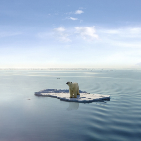 A polar bear managed to get on one of the last ice floes floating in the Arctic sea. Stock fotó