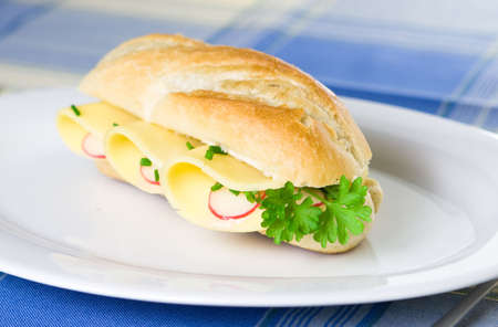 Fresh and yummy vegetarian baguette on a plate