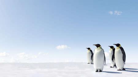 Emperor Penguins in Antacrctica