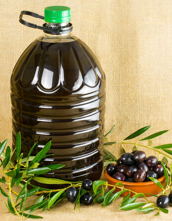 litre: 5 litre bottle of olive oil with fresh olives and branches with copy space