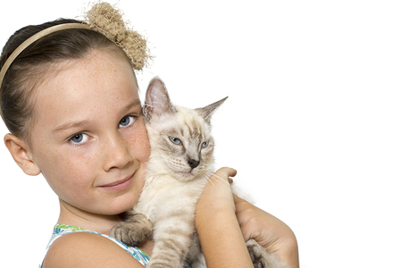 room for copy: Beautiful young girl lovingly  holding her content pet cat, isolated  on a white background with room for copy space and banner text Stock Photo