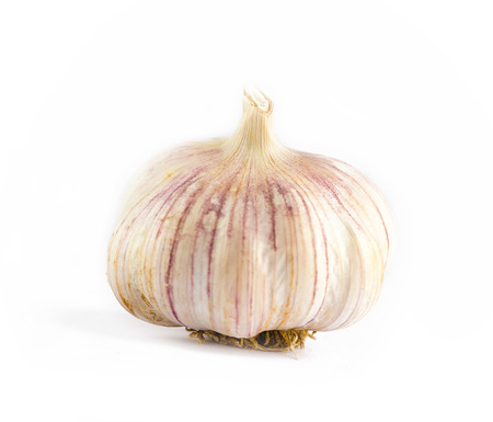 unwashed pink garlic with roots on an isolated white background
