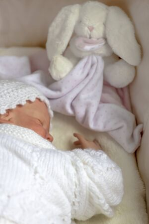 reborn baby doll sleeping with small toy in the background  selective focus to ad copy space  Stock Photo