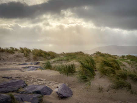 Moody Shot of Sand Dunes with Rocks and Patches of Grass in Front on a Cloudy, Overcast Day - with Rays of Sun Shining Through the Clouds Above