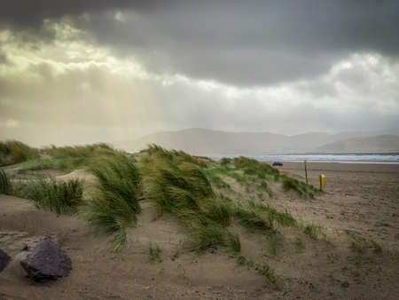 Moody Shot of Sand Dunes with Patches of Grass in Front of a Beach on a Cloudy, Overcast Day - with Rays of Sun Shining Through the Clouds Above and the Beach in the Background