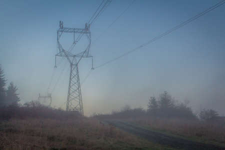 Power Lines Covered in Blue Tinted Fog on a Cold, Winter Morning in the Pacific Northwest