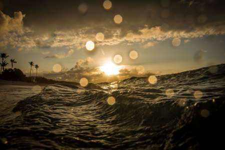 Waves at Sunrise - with Droplets of Water on the Lens and Palm Trees in the Background, on a Bright Morning in Hawaii. Banco de Imagens
