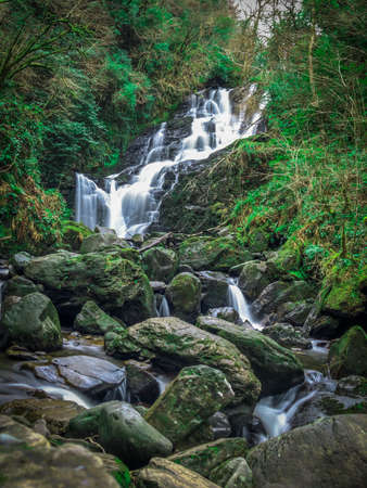 Long Exposure Nature Shot of Water in a Creek Streaming Down Rocks in a Waterfall - with Lush Green Trees in the Background