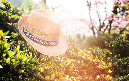 non urban 1: Old straw hat against attached on a plant in garden . Stock Photo