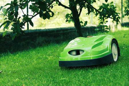 Robotic lawn mower mows the lawn in a garden